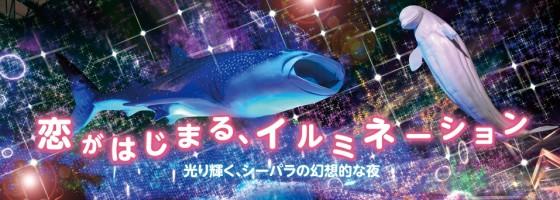 横浜八景島シーパラダイスイルミネーション2013-2014見所は?