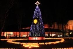 ズーラシアクリスマスイルミネーション
