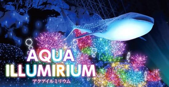 横浜八景島シーパラダイスアクアイルミリウム